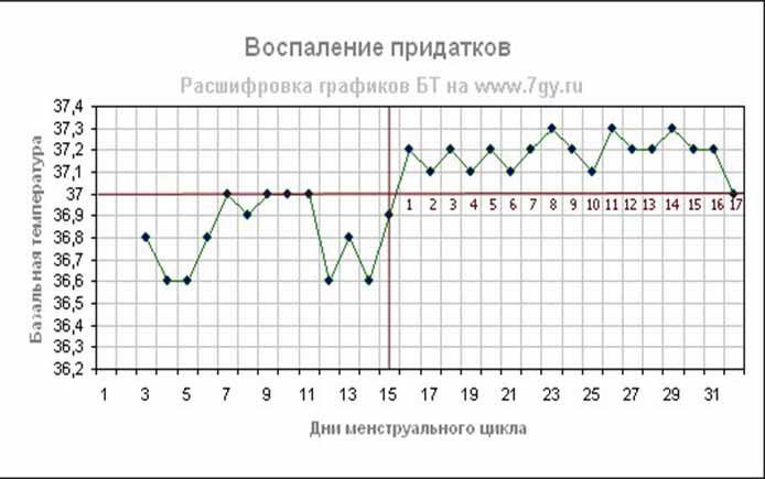 Температура при месячных 37 2 166