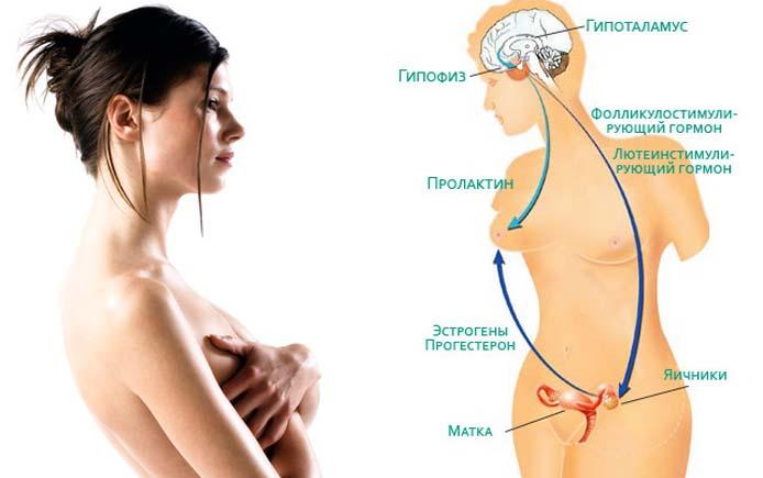 Симптомы оргазма у женщины