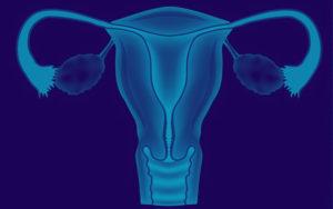 Патология размеров матки