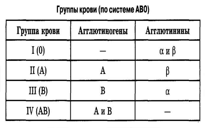 Группа крови по системе АВ0